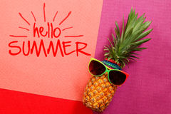 Summer and Holiday concept.Hipster Pineapple Fashion Accessories Stock Photography