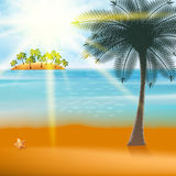 Summer Holiday Flyer Design with palm trees. Royalty Free Stock Photo