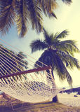 Summer Holiday with a Hammock Stock Images