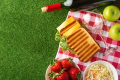Summer holiday, Picnic in the park on the grass. Cloth, senviches, fruits, wine with glasses, top view, Flat lay, The concept of a. Picnic, summer and rest stock photography