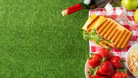 Summer holiday, Picnic in the park on the grass. Cloth, senviches, fruits, wine with glasses, top view, Flat lay, The concept of a. Picnic, summer and rest stock images