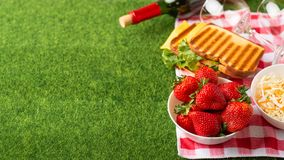 Summer holiday, Picnic in the park on the grass. Cloth, senviches, fruits, wine with glasses, top view, Flat lay, The concept of a. Picnic, summer and rest royalty free stock images