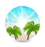 Summer holiday picture with sunlight and palm leav Royalty Free Stock Photos