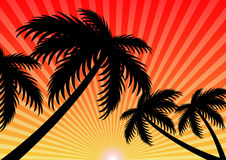 Summer holiday sunset sunlight vector background Stock Photo