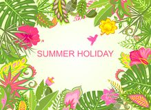Summer holiday tropical background Royalty Free Stock Images