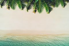 Summer holiday on tropical island. Palm trees and sea waves.  Royalty Free Stock Photography