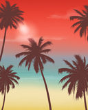Summer holidays background. Exotic landscape with palm trees. Vector Stock Photography