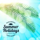 Summer holidays beach paradise leaves background. Vector vector illustration