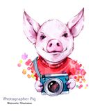 Summer holidays illustration. Watercolor cartoon pig with camera. Funny photographer. Traveling. Symbol of 2019 year. Perfect for T-shirts, posters royalty free illustration