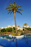 Summer holidays, magnificent swimming pool , Andalusia, Spain royalty free stock photography