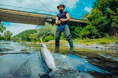 Summer holidays and people concept. Trout. A fisherman with fishing rod on the river. Fly fisherman using fly fishing stock photo