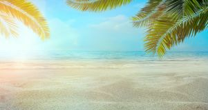 Summer holidays with sand and palm leaves royalty free stock images
