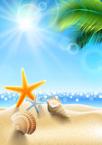 Summer holidays - seashell Royalty Free Stock Images