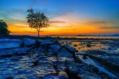 Tropical beach at sunset. Summer holidays travel Tropical beach at sunset royalty free stock photography