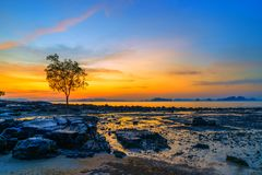 Tropical beach at sunset. Summer holidays travel Tropical beach at sunset royalty free stock image