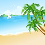 Summer holidays vector background  with palm Royalty Free Stock Image