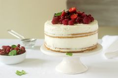 Summer home biscuit cake with curd cream, decorated with fresh berries of strawberries, raspberries and currants. Selective focus Royalty Free Stock Images