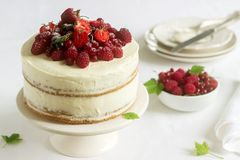 Summer home biscuit cake with curd cream, decorated with fresh berries of strawberries, raspberries and currants. Selective focus Royalty Free Stock Photography