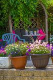 Summer home garden with lovely flowers and wooden seat. Beautiful, Summer garden with amazing blossom in big flowerpots stock images