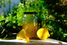 Summer , homemade Limoncello cooking Royalty Free Stock Images