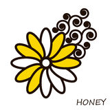 Summer honey flower with curls. Floral element. Royalty Free Stock Photo