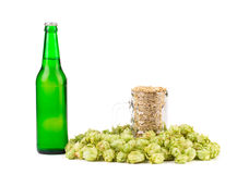 Summer hops and amber malt Stock Photo