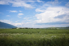 Summer horizon Royalty Free Stock Photo