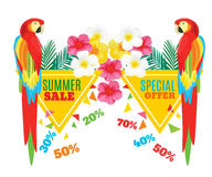 Summer Hot Sale Poster. Parrot, Exotic Flowers and Pineapple. Vector geometric promotional illustration. Eps 10 Stock Images