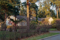 Summer house estate in forest street town Royalty Free Stock Images
