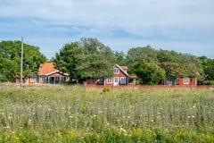 Summer houses on Baltic sea island Oland Royalty Free Stock Image