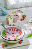 Summer ice cream with fruity yogurt Royalty Free Stock Image