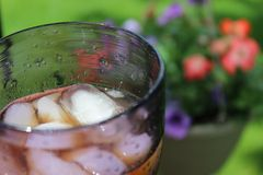Summer Iced Tea Royalty Free Stock Image
