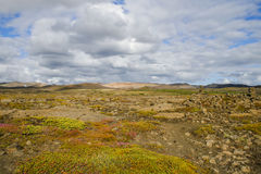 Summer in Iceland Royalty Free Stock Photos
