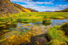 Summer in Iceland Stock Image