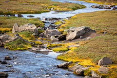 Summer Iceland Landscape with Small River Stream Royalty Free Stock Photo