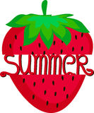 Summer icon of ripe strawberry Stock Photos