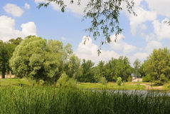 Summer idyllic landscape. With small house Royalty Free Stock Images