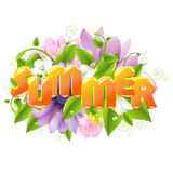 Summer illustration Royalty Free Stock Image