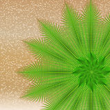 Summer illustration with beach and palm leaves Stock Photography