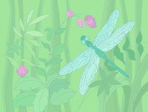 Summer illustration with a dragonfly Royalty Free Stock Photo