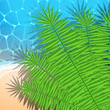 Summer illustration with ocean, beach and palm lea Royalty Free Stock Image