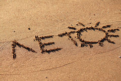 Summer. The inscription summer on the sand on the shore of the Black Sea Stock Image