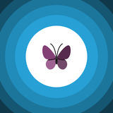 Summer Insect Flat Icon. Violet Wing Vector Element Can Be Used For Monarch, Summer, Insect Design Concept. Stock Photography