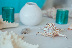 Summer inspiration vacation composition background with beach starfish and shells on white wooden table close-up. fish. Star, sea Stock Images