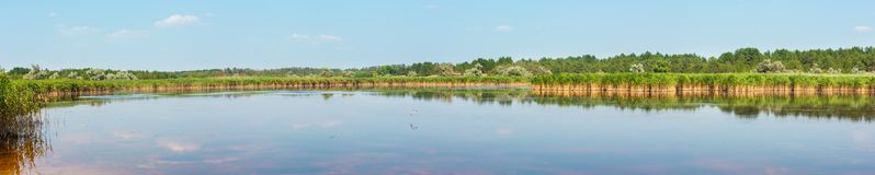 Summer iodine lake with a therapeutic effect thanks to the high content of iodine, Ukraine. Summer Pryschukove dark brownish-red iodine lake with a therapeutic stock images