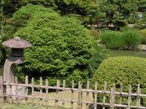 Summer Japanese garden Stock Photography
