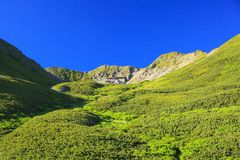 Summer Japanese Mountain Royalty Free Stock Photography