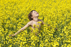 Summer joy. Young boy in a field full of yellow rapeflowers Stock Images