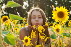 Summer joy Royalty Free Stock Images