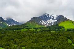 Summer in Kenai Mountains in Alaska Stock Photos